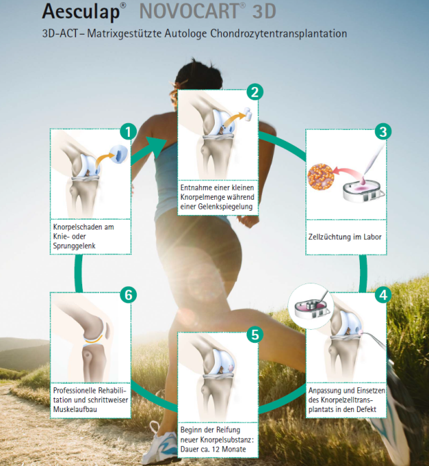 Gelenke, Haut & Co. nachhaltig regenerieren: Clusterportal BW